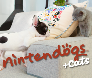 nintendogs + cats: Bouledogue français
