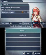 N3DS_FireEmblemWarriors_temple1_frFR