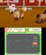 3DS_HarvestMoonSkytreeVillage_frFR_03