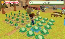 3DS_HarvestMoonTheLostValley_01_deDE