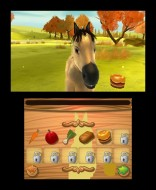 3DS_MyFoal3D_02