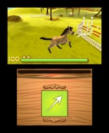 3DS_MyFoal3D_03