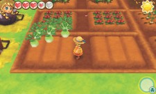 3DS_StoryofSeasonsTriofTowns_WorkingFarm
