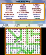 3DSDS_WordSearch10K_03