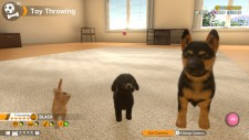 NSwitch_LittleFriendsDogsAndCats_04