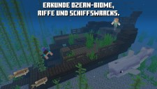 NSwitch_Minecraft_DE_04