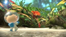 NSwitch_Pikmin3Deluxe_03