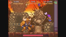 NSwitchDS_BattlePrincessMadelynRoyalEdition_02