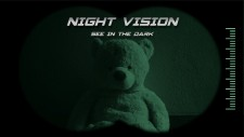 NSwitchDS_NightVision_01