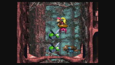 WiiUVC_DonkeyKongCountry3_03