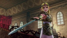 CI_NSwitch_HyruleWarriorsDefinitiveEdition_ZeldaWithSword