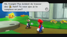 mario_and_luigi_french