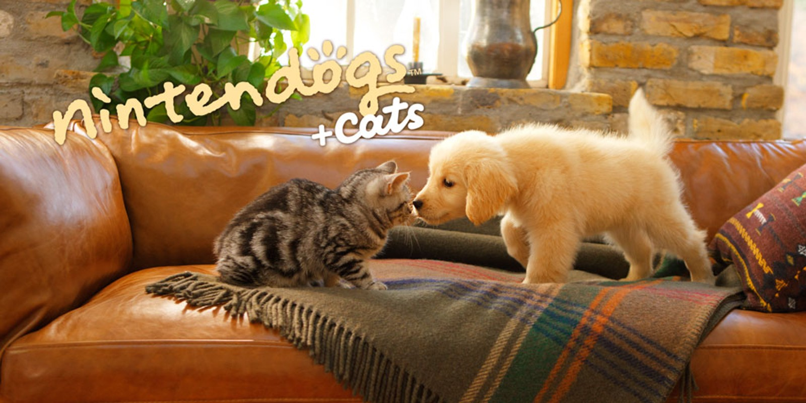 nintendogs + cats: Golden Retriever & neue Freunde