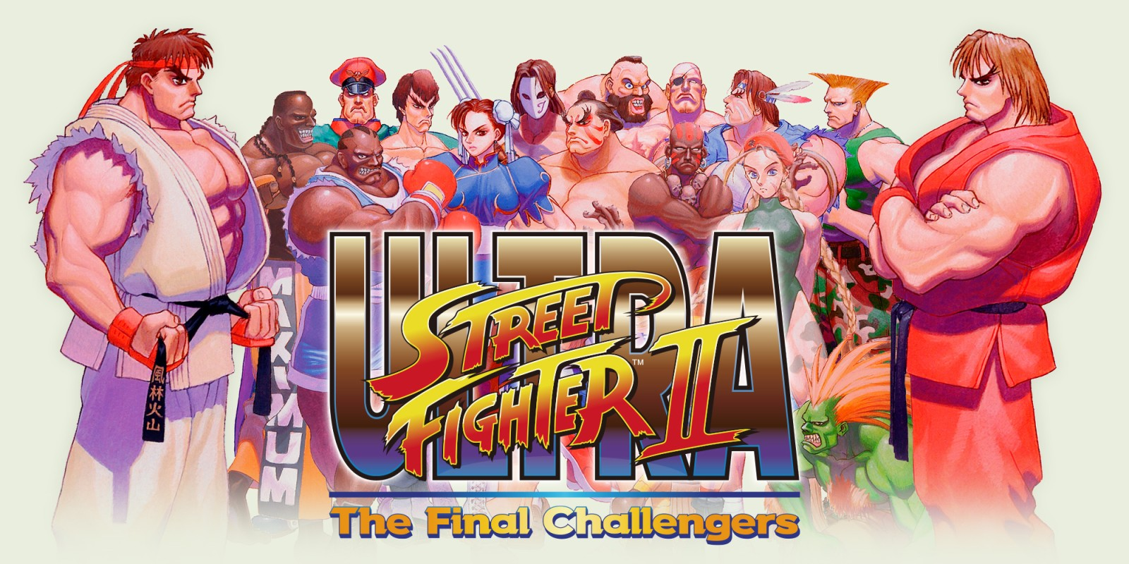 Ultra Street Fighter Ii The Final Challengers Nintendo Switch Jeux Nintendo