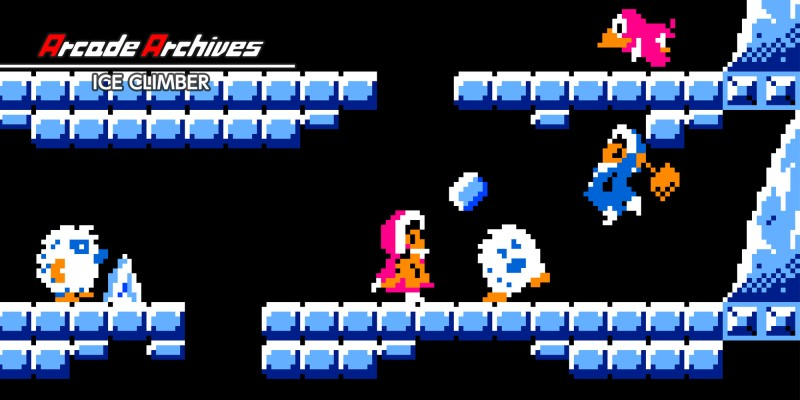 Arcade Archives ICE CLIMBER