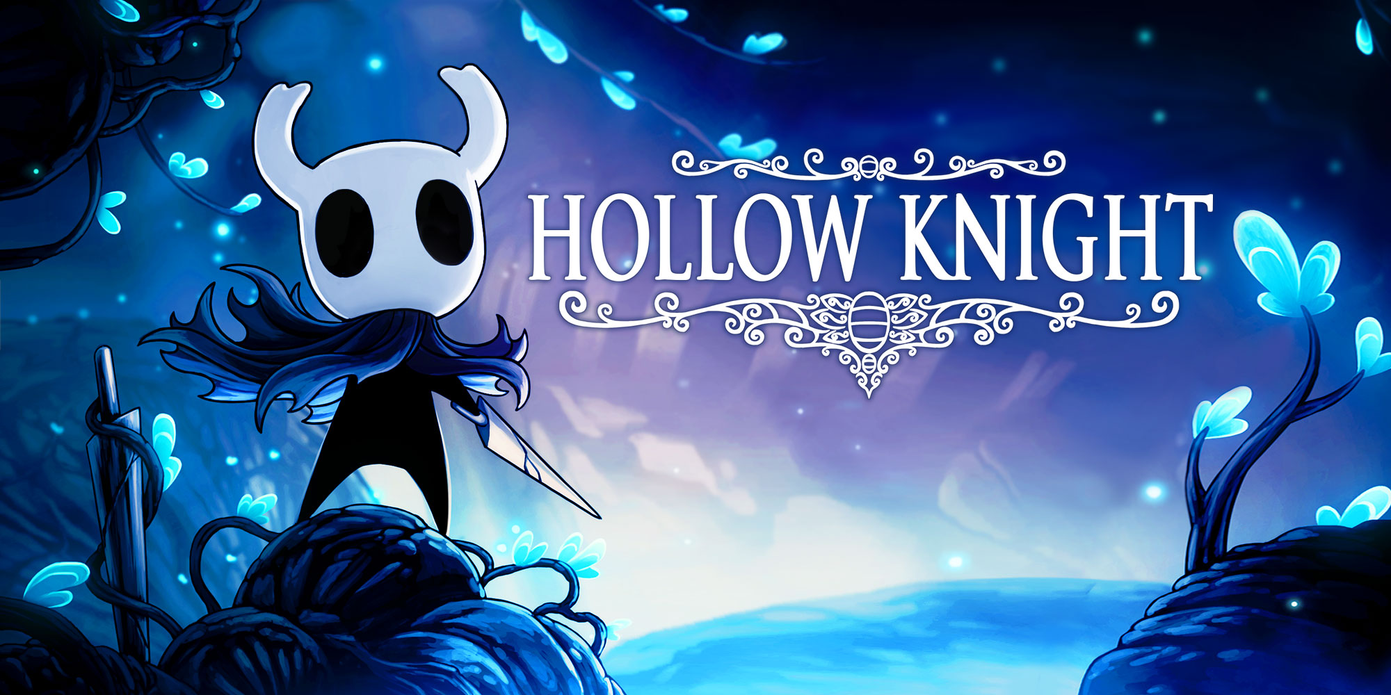 H2x1_WiiUDS_HollowKnight.jpg