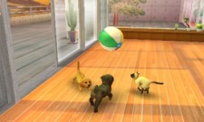 3DS_nintendogs_02scrn02_U_Ev