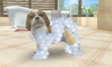 3DS_nintendogs_04scrn04_U_Ev