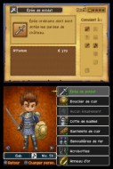 FR_Dragon_Quest_IX_Customisation_Male_3